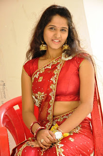 Actress Jayanthi  Saree Stills 017