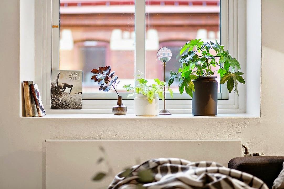 decoración fácil: # diariodeco11 decorar con plantas las repisas