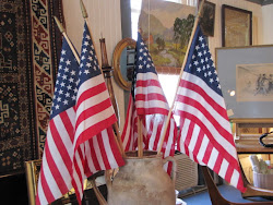 Patriotic Flag Display