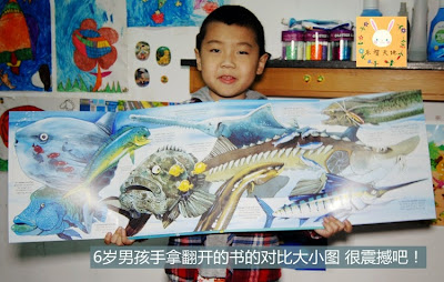 Large format sea creatures book for kids