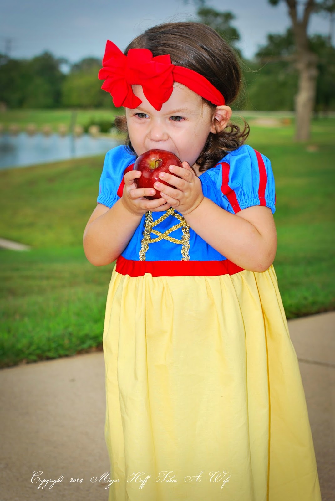 homemade snow white costume