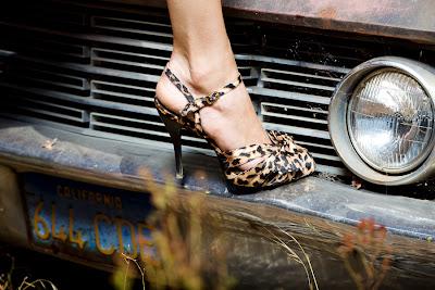 Steve+Madden+Lux+heels+Dale+Janee+Steliga