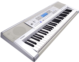 dan organ Casio CTK 810IN