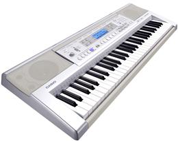 dan organ Casio CTK 810IN
