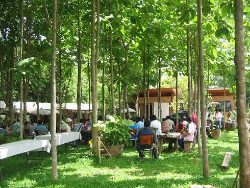 Garden Rooms Meeting outdoor Activity