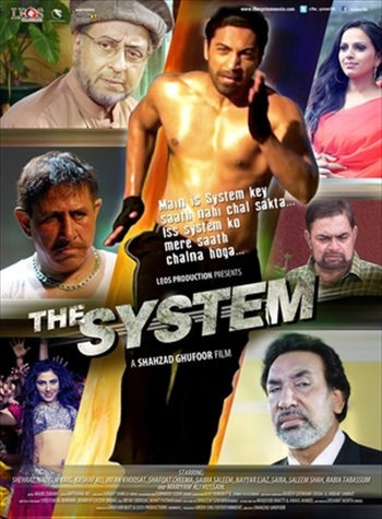 The System 2014 Urdu 720p HDRip 1GB