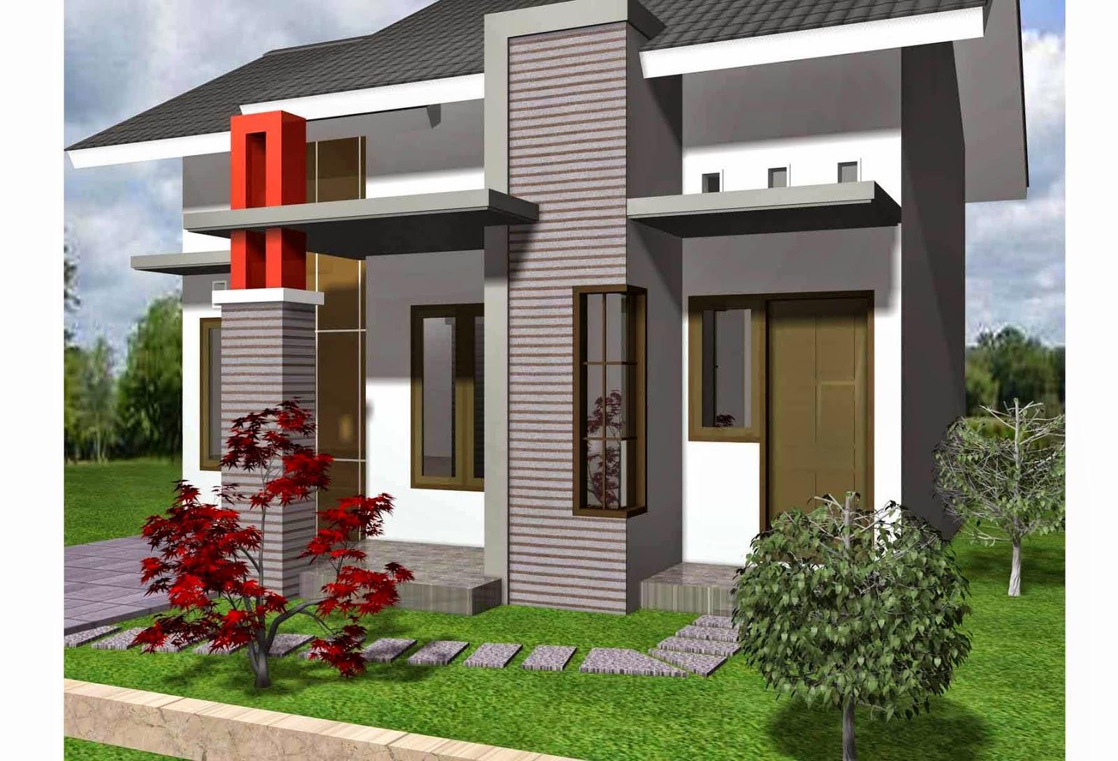 rumah minimalis modern satu lantai dilahan luas maupun