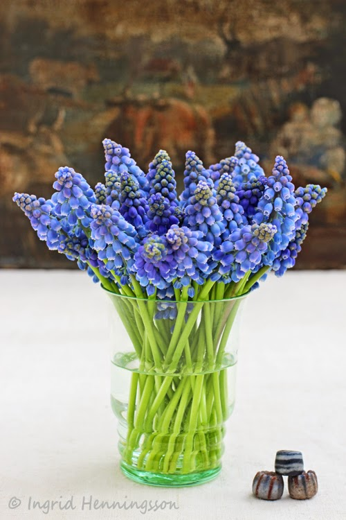 Grape Hyacinth Simple Flower Arrangement