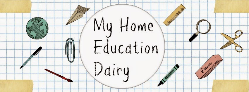 My Home Education Diary