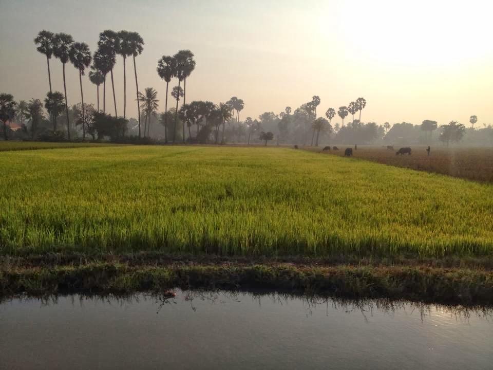 http://www.cambodiaquadbike.com/