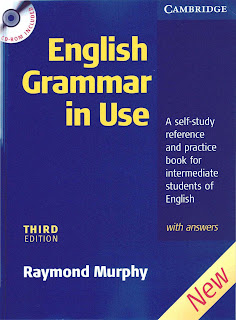 English Grammar In Use with Answers 3 edition