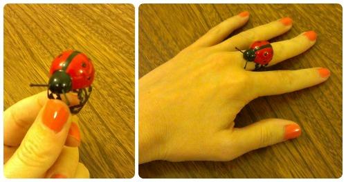 craftypainter: Ladybird rind by craftypainter
