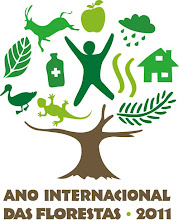 2011 - International Year of Forests