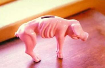 Look at my piggy bank after I bought gas this morning