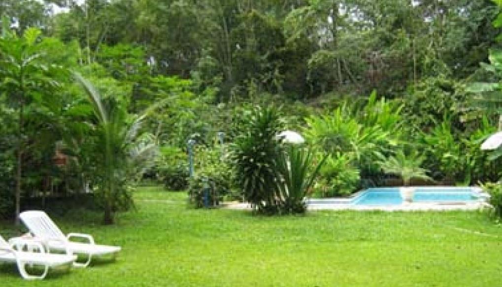 Jardines hermosos c mo preparar el c sped para el for Ver imagenes de jardines de invierno
