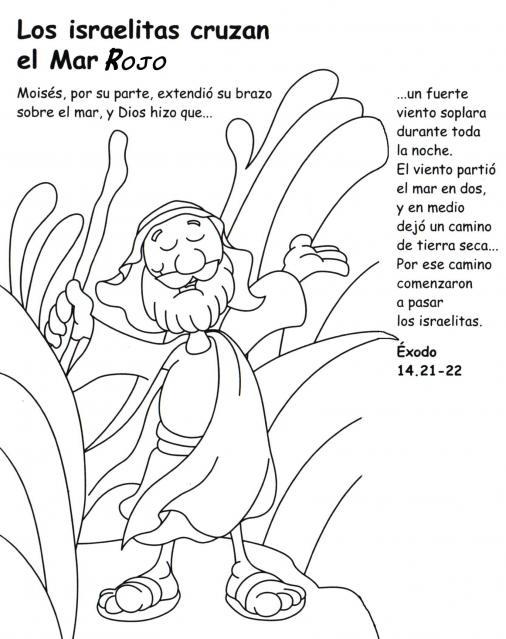 Tallita y las clases de religión: La historia de Moíses para colorear...