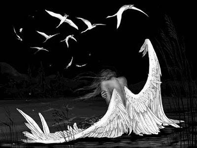 falling+angel