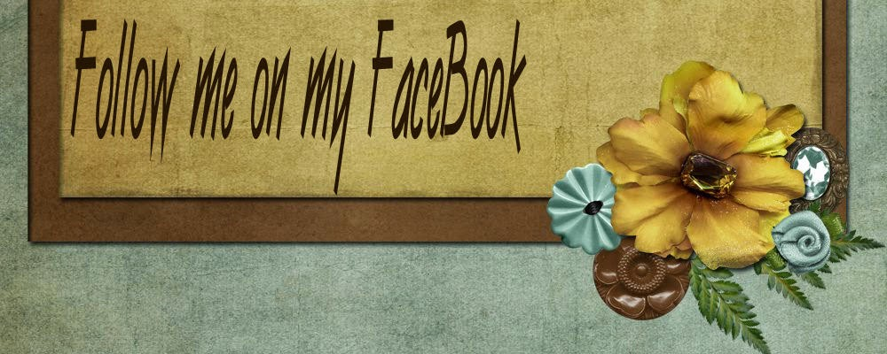 Follow me on My FaceBook