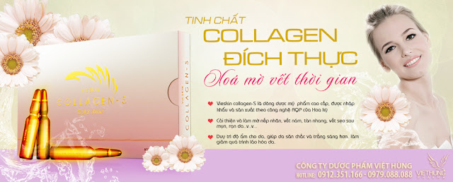 Collagen Vieskin S