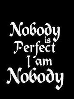 http://3.bp.blogspot.com/-F_W_7BZW5Zg/TWZw2WTKJeI/AAAAAAAAJcg/casdm6BTSBI/s1600/Nobodyisperfect.jpg