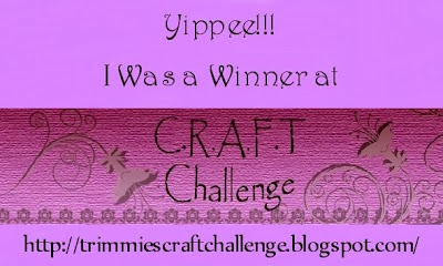 Lucky winner at Craft Challenge ~ 16th January 2014