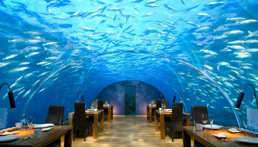 Conrad maldives rangali island hotel oh my facts for Ithaa restaurant maldives