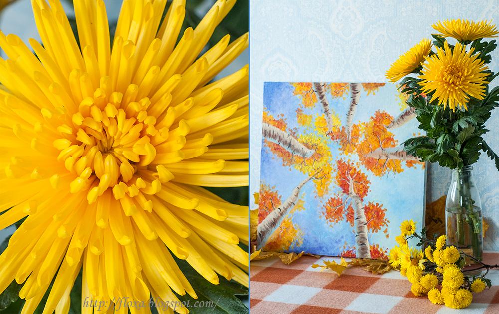 масло осень, картина маслом деревья и небо, деревья осенние, березы осень небо, картина желто голубая