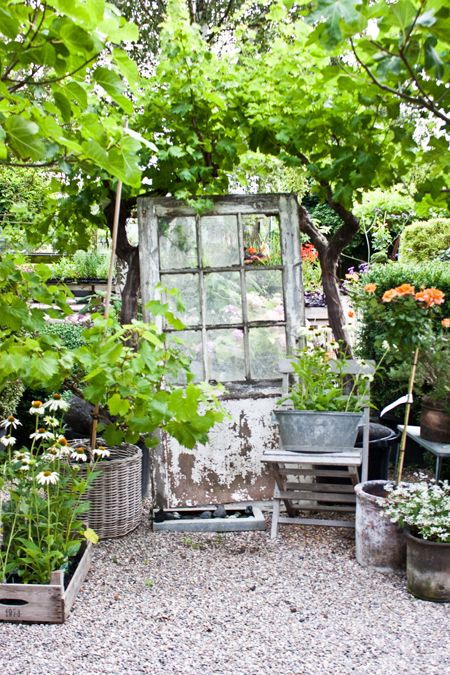 Small budget gardening dreaming gardens - Gardening on a small budget ...