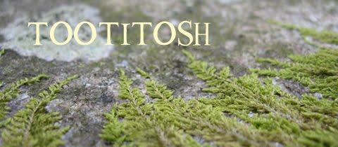 Tootitosh