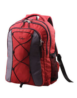 Buy Skybags 2+1 compartment backpack for Rs.601 at Askmebazaar : BuyToEarn
