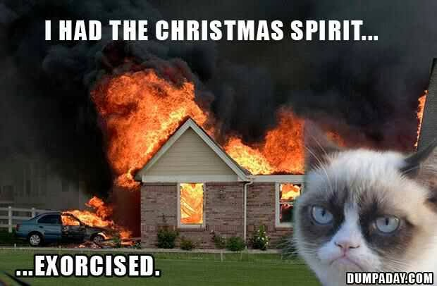 Grumpy Cat Had The Christmas Spirit Exorcised Funny
