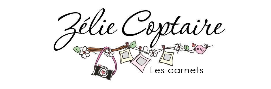 Les carnets de Zélie Coptaire