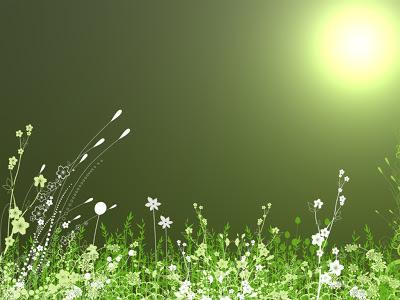 Green wallpaper free