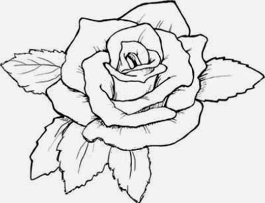 Flowers Coloring Pages Rose | Many Flowers
