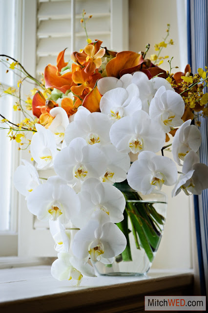 Phalaenopsis orchid, calla lily bridal bouquet - Splendid Stems Floral Designs