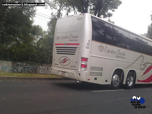 Pullman de Morelos Ejecutivo Dorado