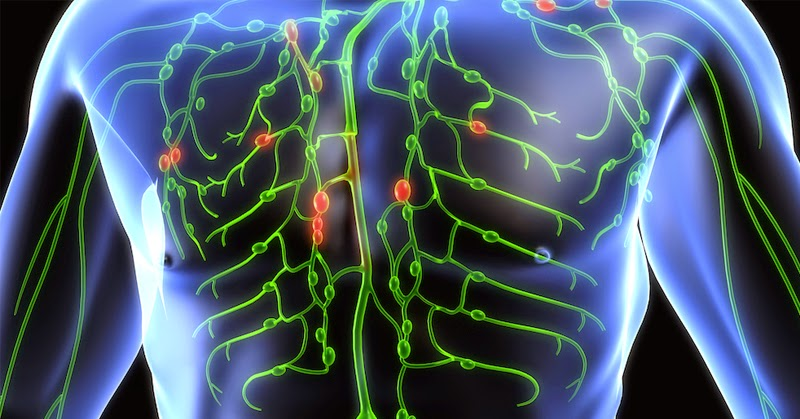 5 Ways To Take Care of Your Lymphatic System