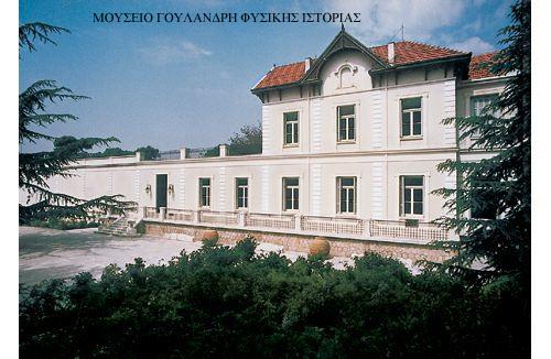 Η παρουσίαση της επετειακής  έκθεσης του Μουσείου Φυσικής Ιστορίας Γουλανδρή στο TVKifisias.gr