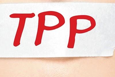 Kemendikbud membuat kebijakan bahwa SK pencairan TPP hanya berlaku untuk enam bulan.