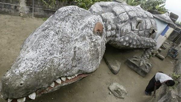 Căn nhà cá sấu