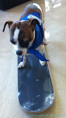 JR skateboarding
