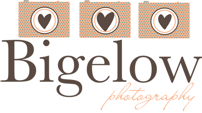 Bigelow Photography