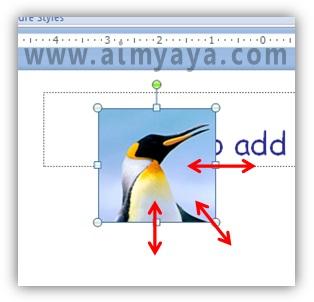 Gambar:  Mengatur ukuran (zoom) dan posisi gambar hasil cropping