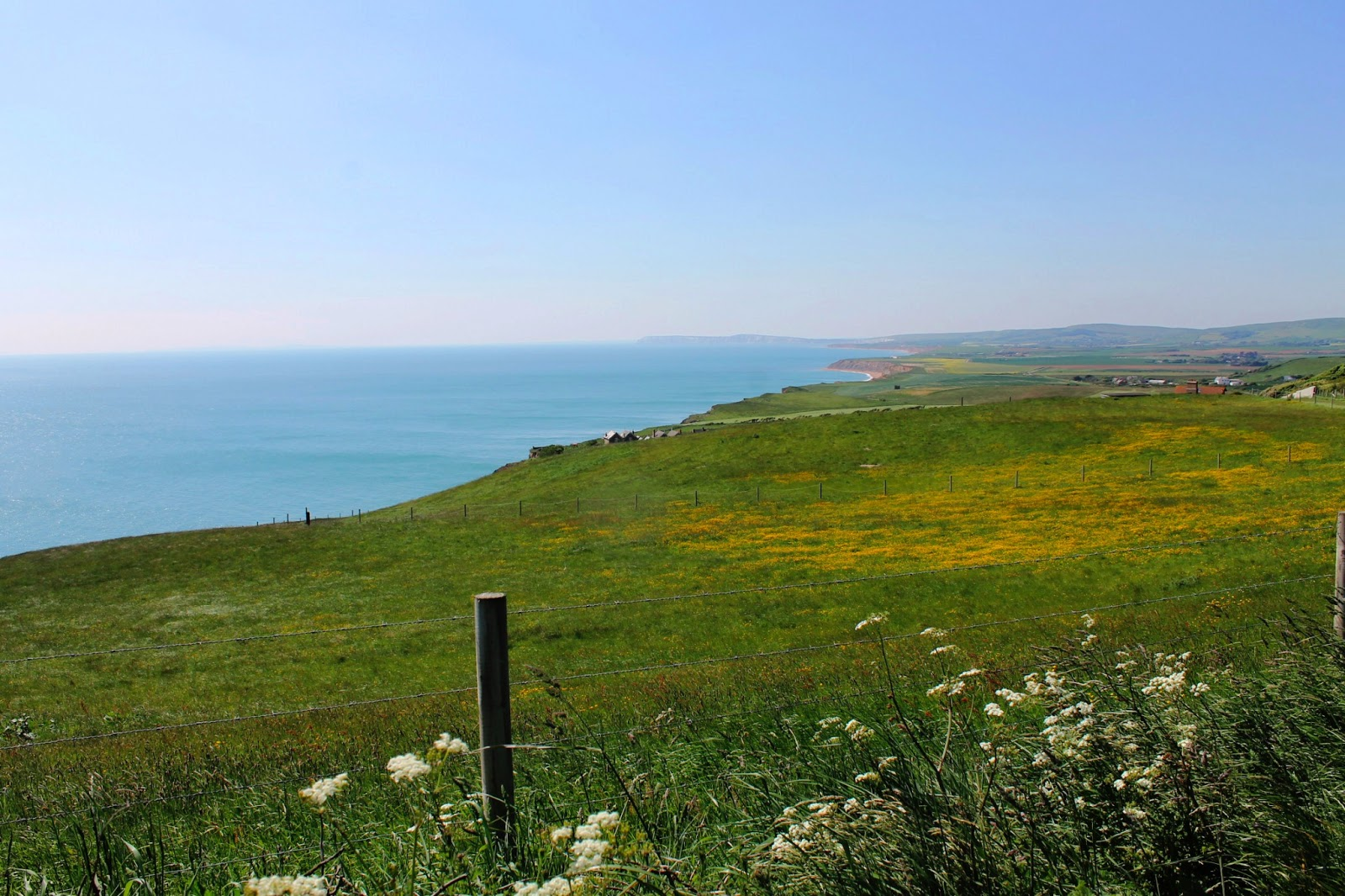 isle of wight scenery view nature cliffs sea fields