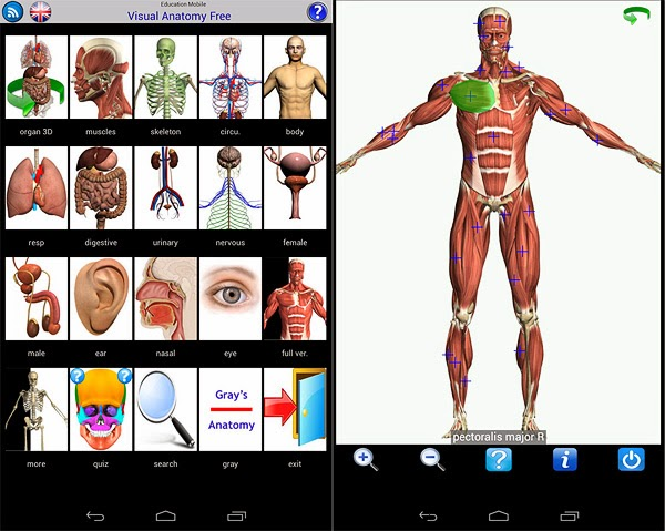 visual anatomy app android