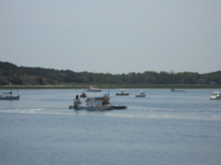 Wellfleet Recycled Oyster Shell Barge