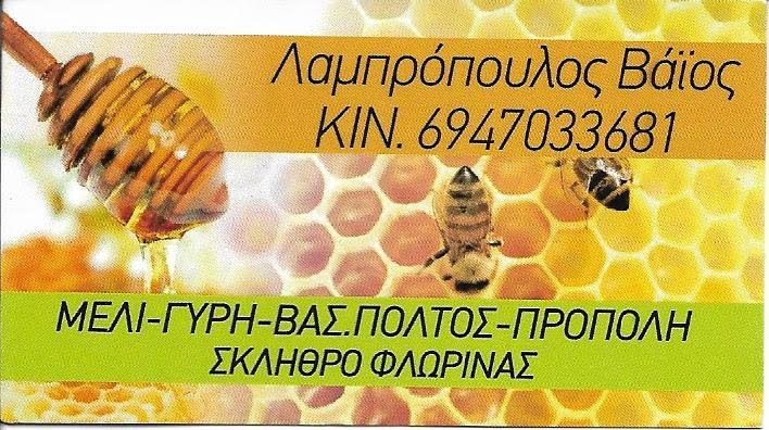 ΜΕΛΙ-ΓΥΡΗ-ΒΑΣ ΠΟΛΤΟΣ-ΠΡΟΠΟΛΗ