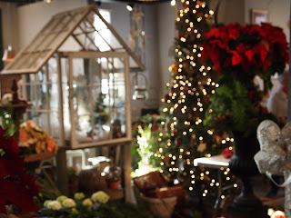 Stunning Le Petit Jardin Madison Ga Gallery - House Design ...
