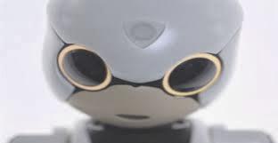Kiboro,  humanoide de compañia de japon