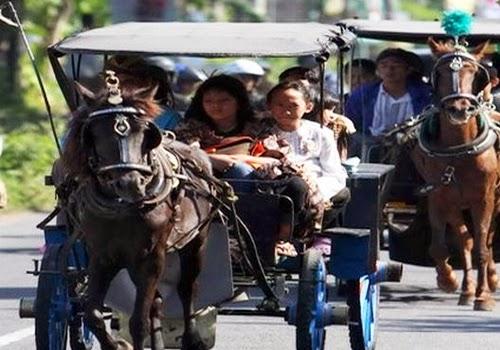 Kendaraan Tradisional Andong Kota Solo